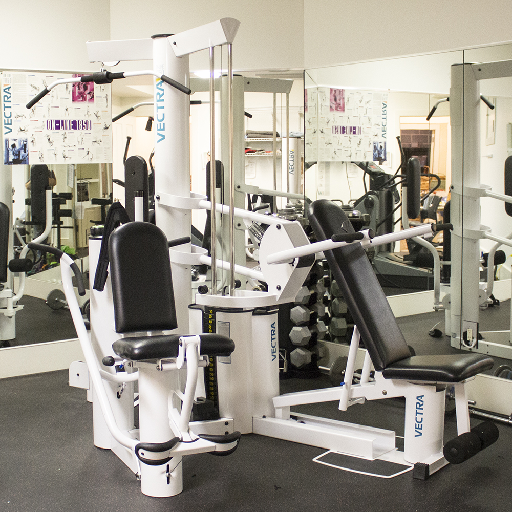 Vectra 1850 home gym for sale