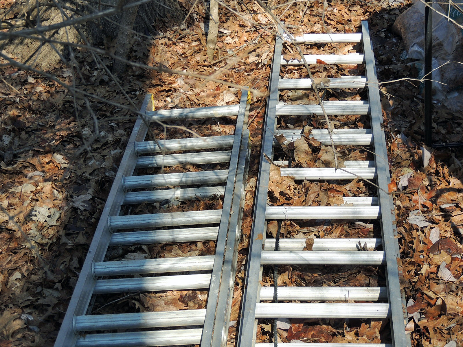 A Pair Of Aluminum Extension Ladders Ebth