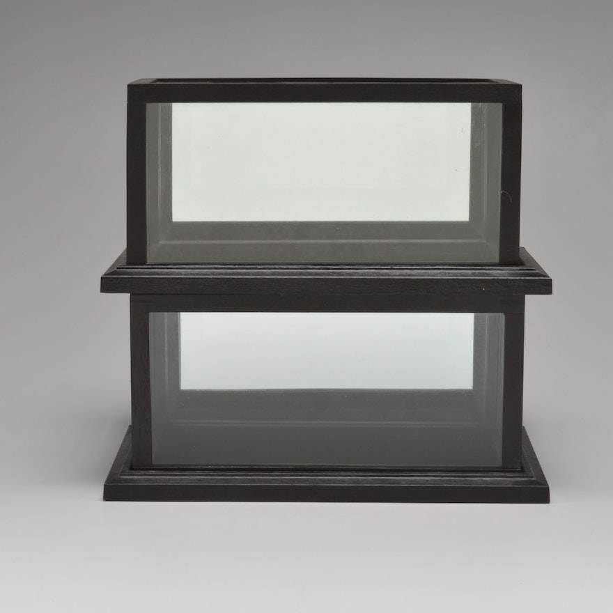 221128c6886 Two Beautiful Display Cases   EBTH