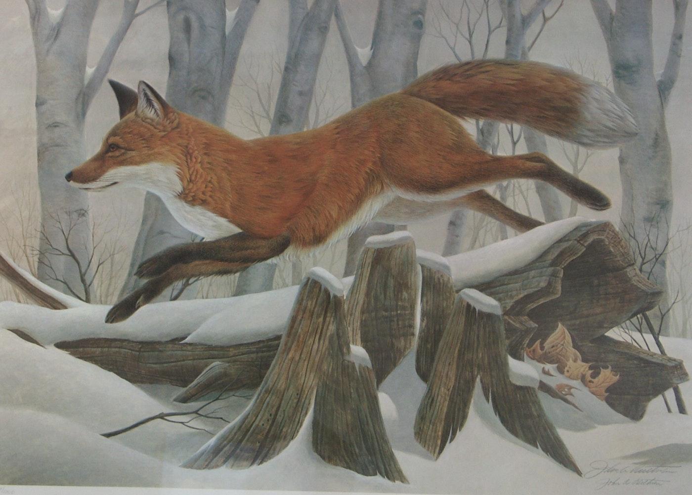 Signed John Ruthven Red Fox Print Ebth