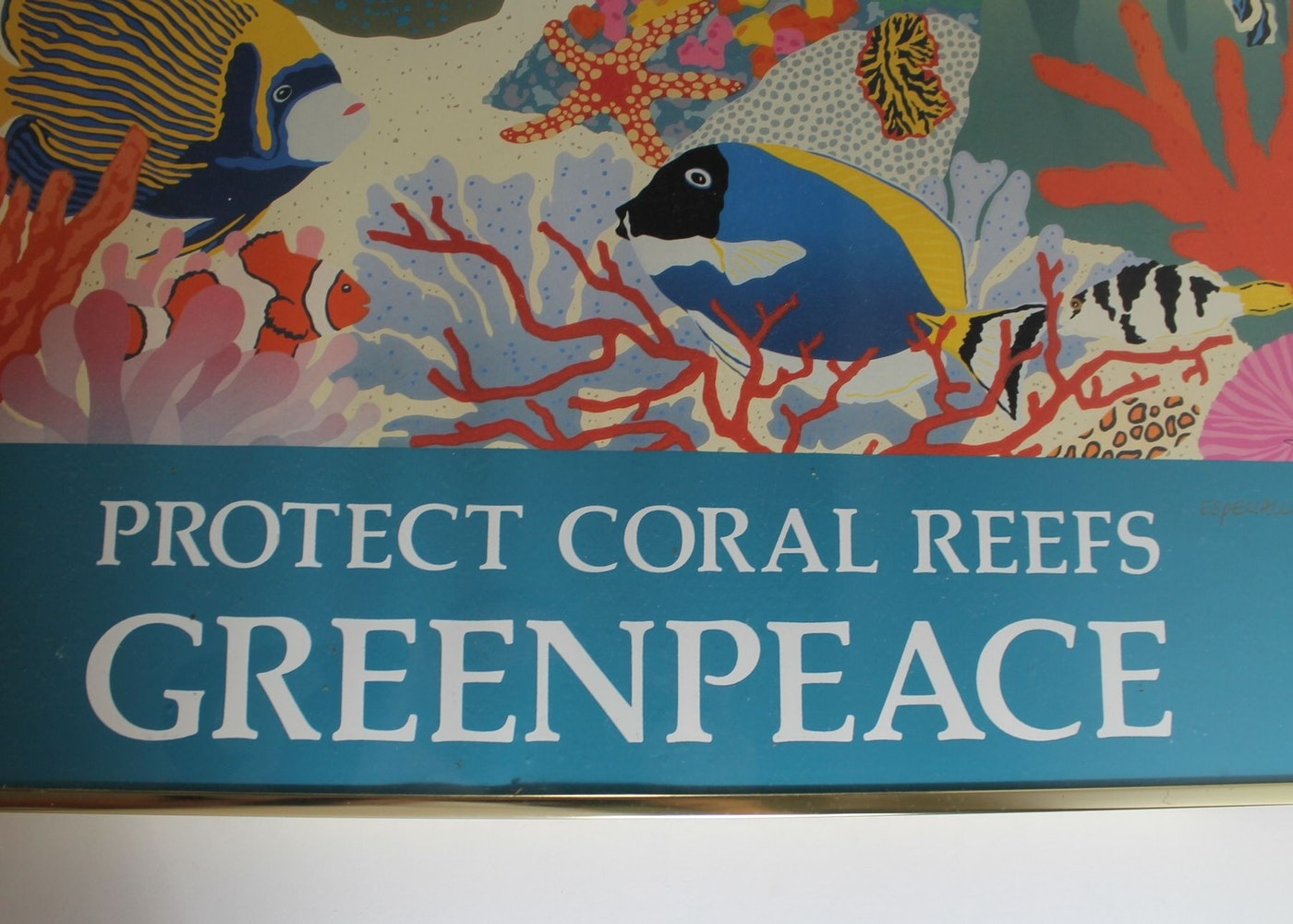 Wall Art Greenpeace : Framed greenpeace poster quot protect coral reefs ebth