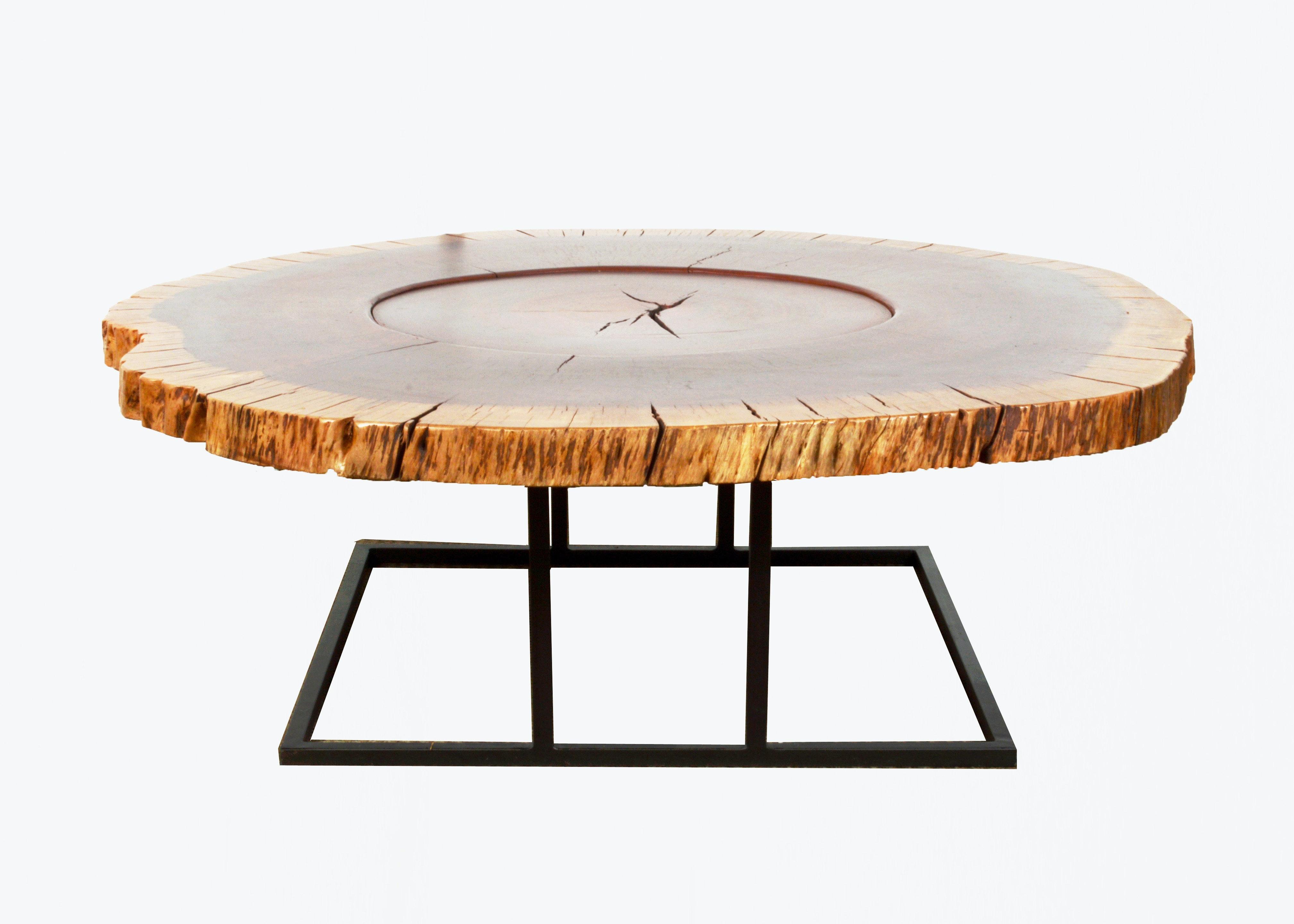 Rajuela Wood Tree Slice Cocktail Table By Taracea ...