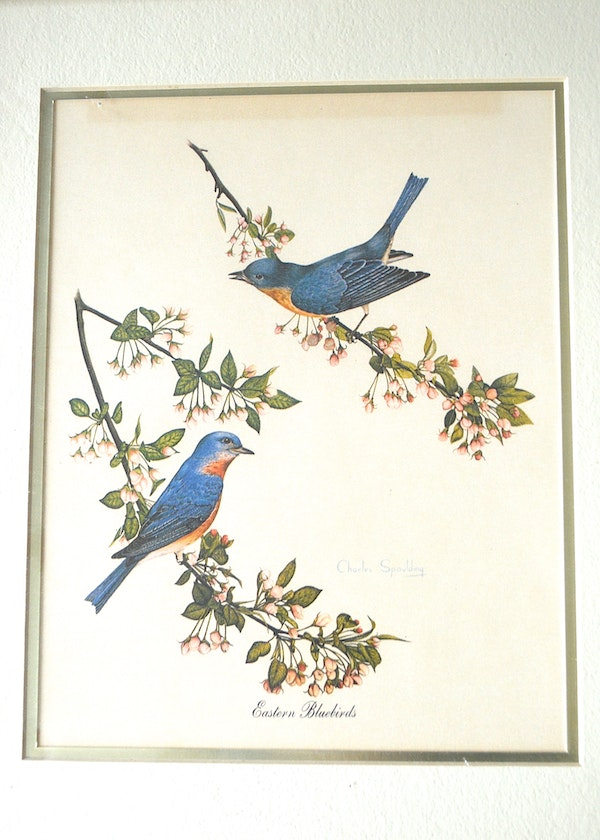 Framed Pair Of Bird Prints By Lexington Artist Charles