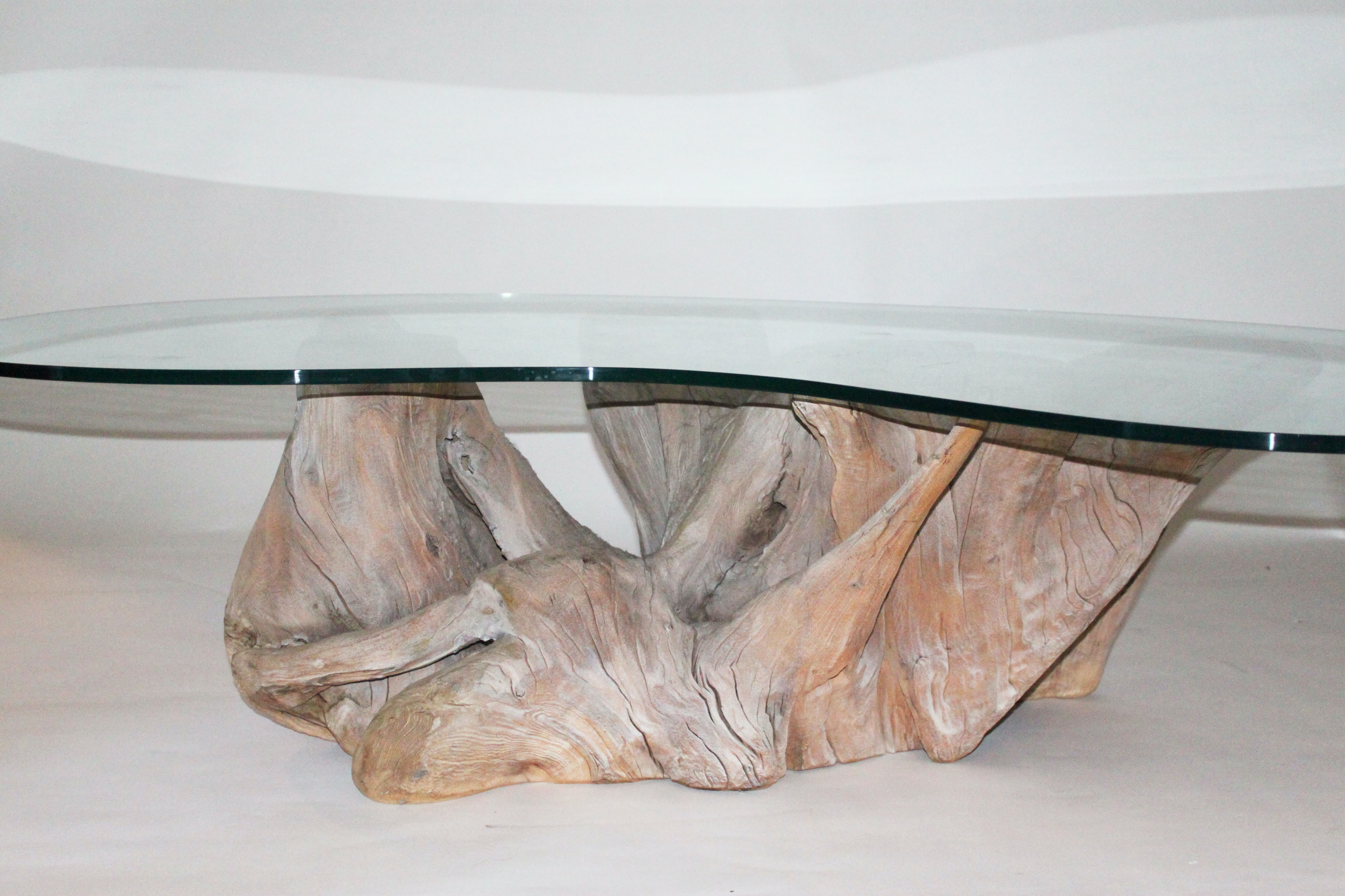 Kidney Shaped Glass Top Coffee Table