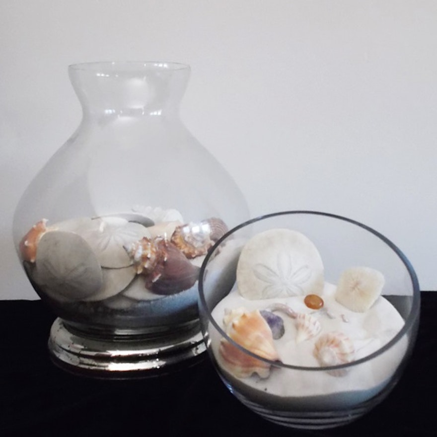 Two Glass Vases With Seashells And Sand Ebth