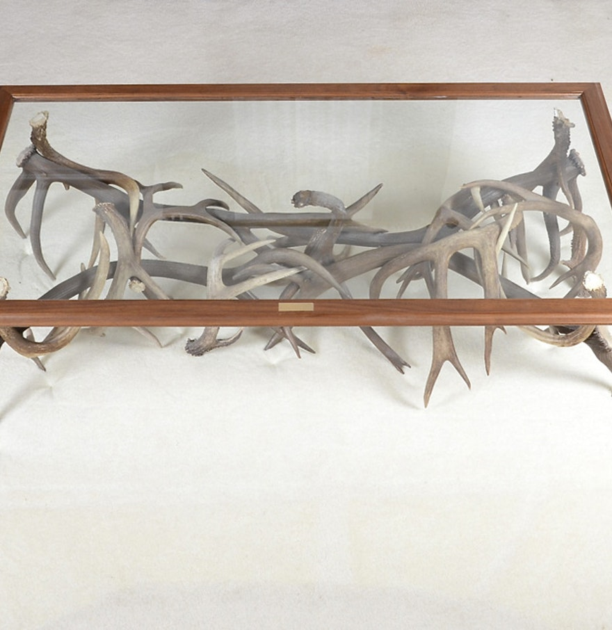 Custom Made Glass Top And Deer Antler Coffee Table Ebth
