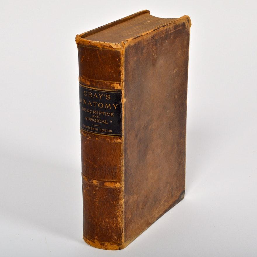 1893 Grays Anatomy Descriptive And Surgical 13th Edition Ebth