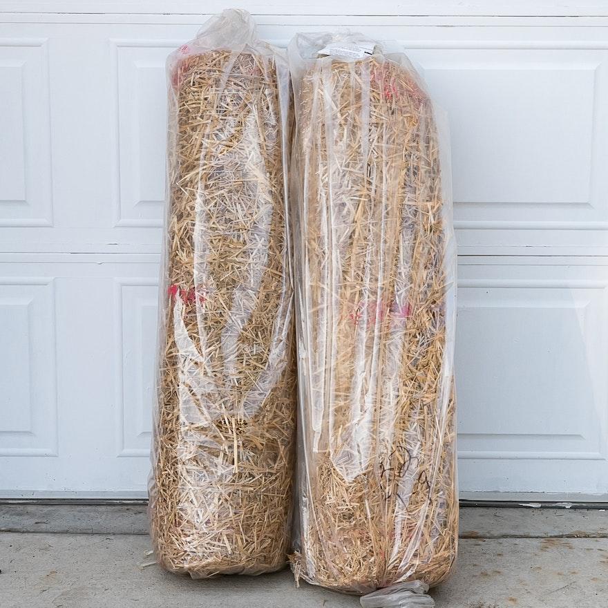 starter seed mats p heat depot ft x the home pennington in mat