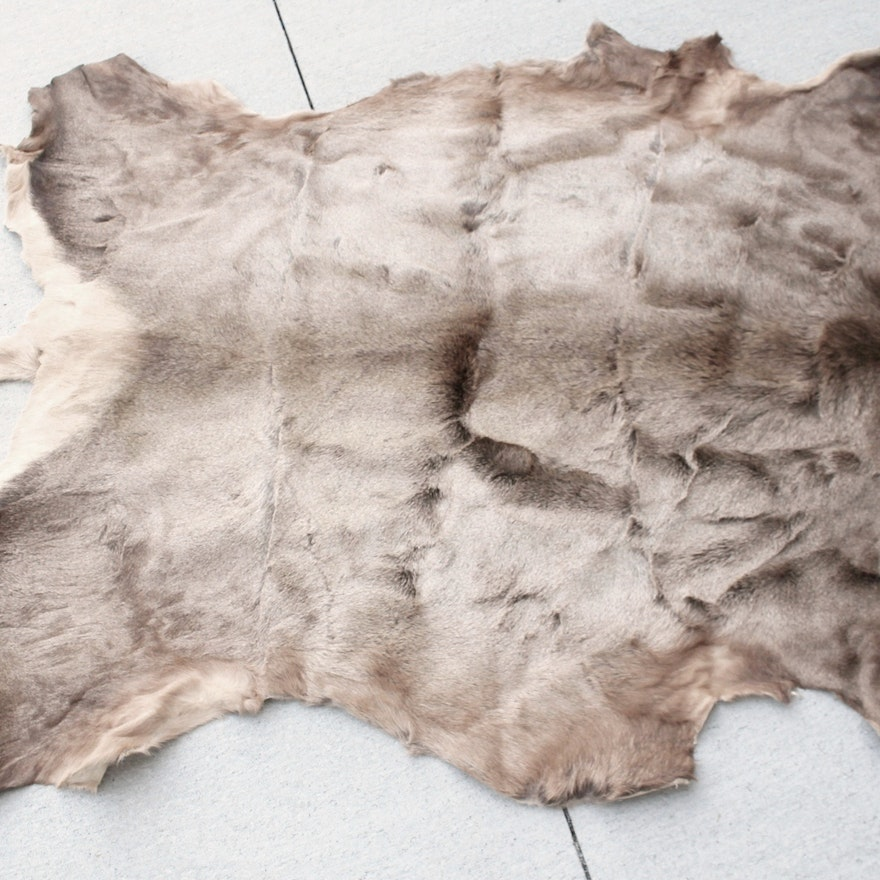 Large Elk Hide Rug