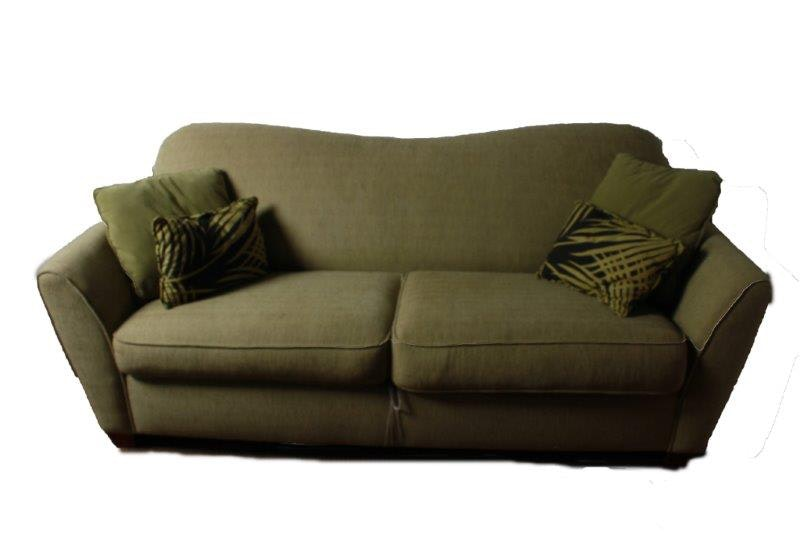 Sage Green Ellis Queen Size Sleeper Sofa EBTH