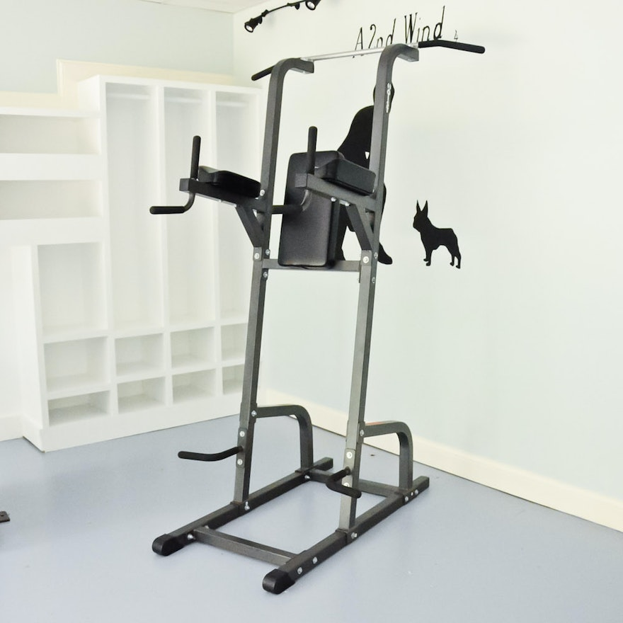 Fitness Equipment Nashville: Hoist Fitness Systems Body Solid Pull-up System
