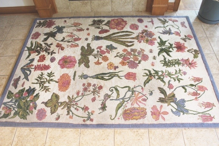 Claire Murray Botanical Print Area Rug Ebth