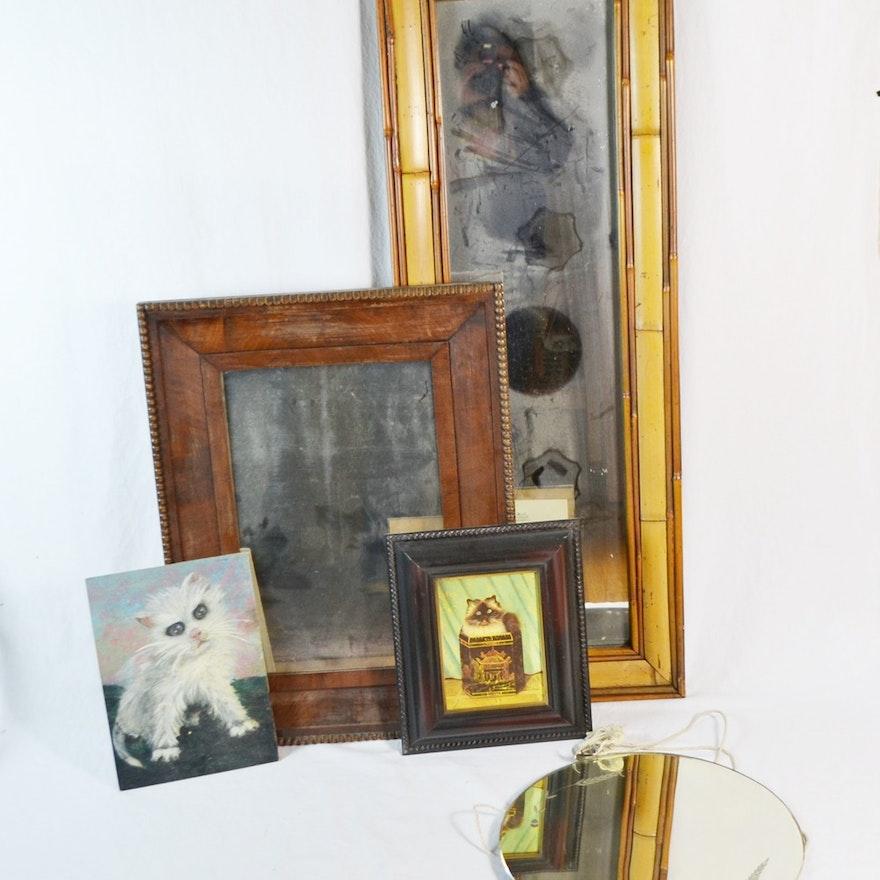 Mirrors & Cats