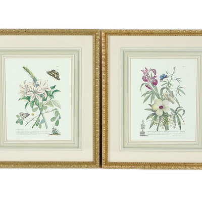 Vintage Art Prints   Art Print Auctions   Lithographs for Sale in ...