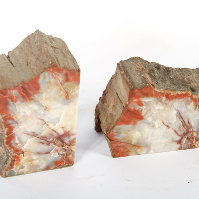 Pair of Petrified Wood Book Ends