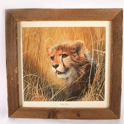 """Charles Frace """"Cheetah Kitten"""" Print"""