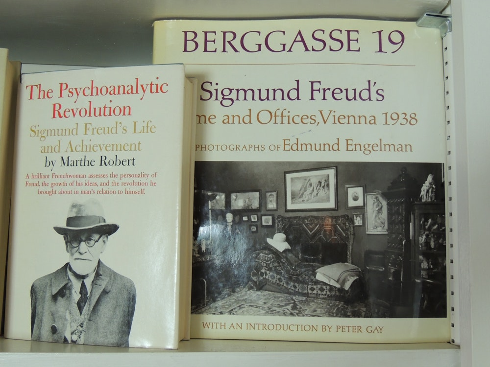 """complete writings of sigmund freud The complete psychological works of sigmund freud (vol 9, jensen's """"gradiva"""" and other works)  family romances (1908) various shorter writings."""