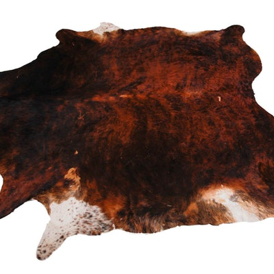 Brown and White Cow Hide Rug