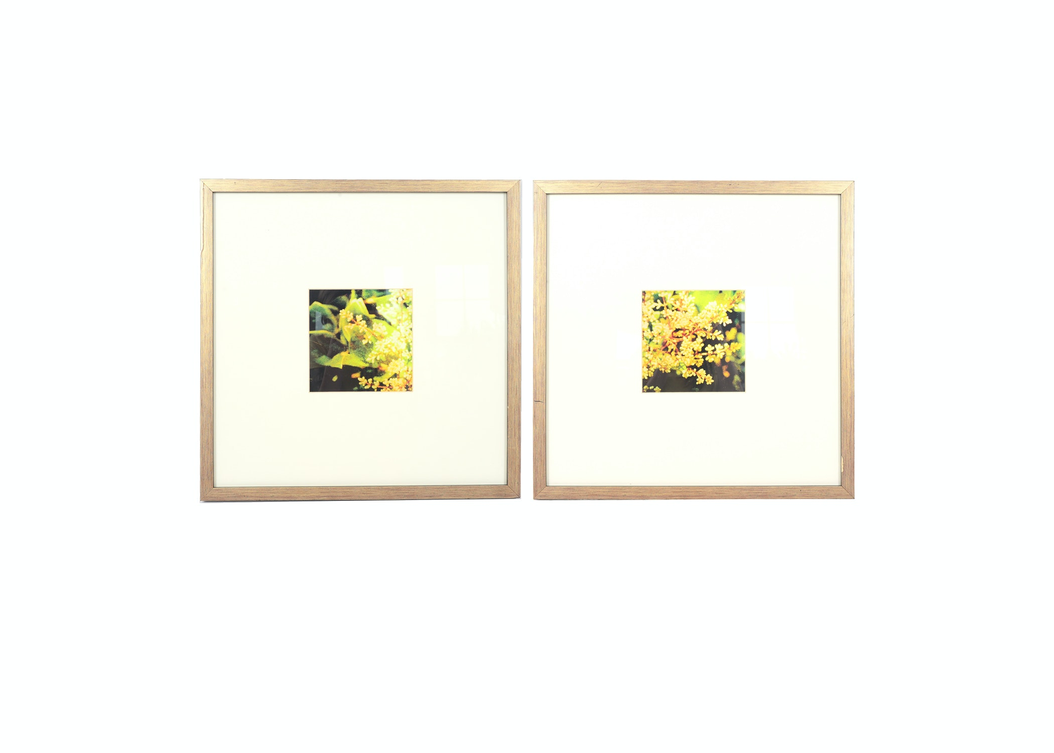 Pair of Framed and Matted Lithographs