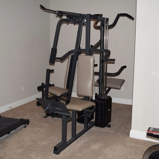 weider home gym exercise chart pdf
