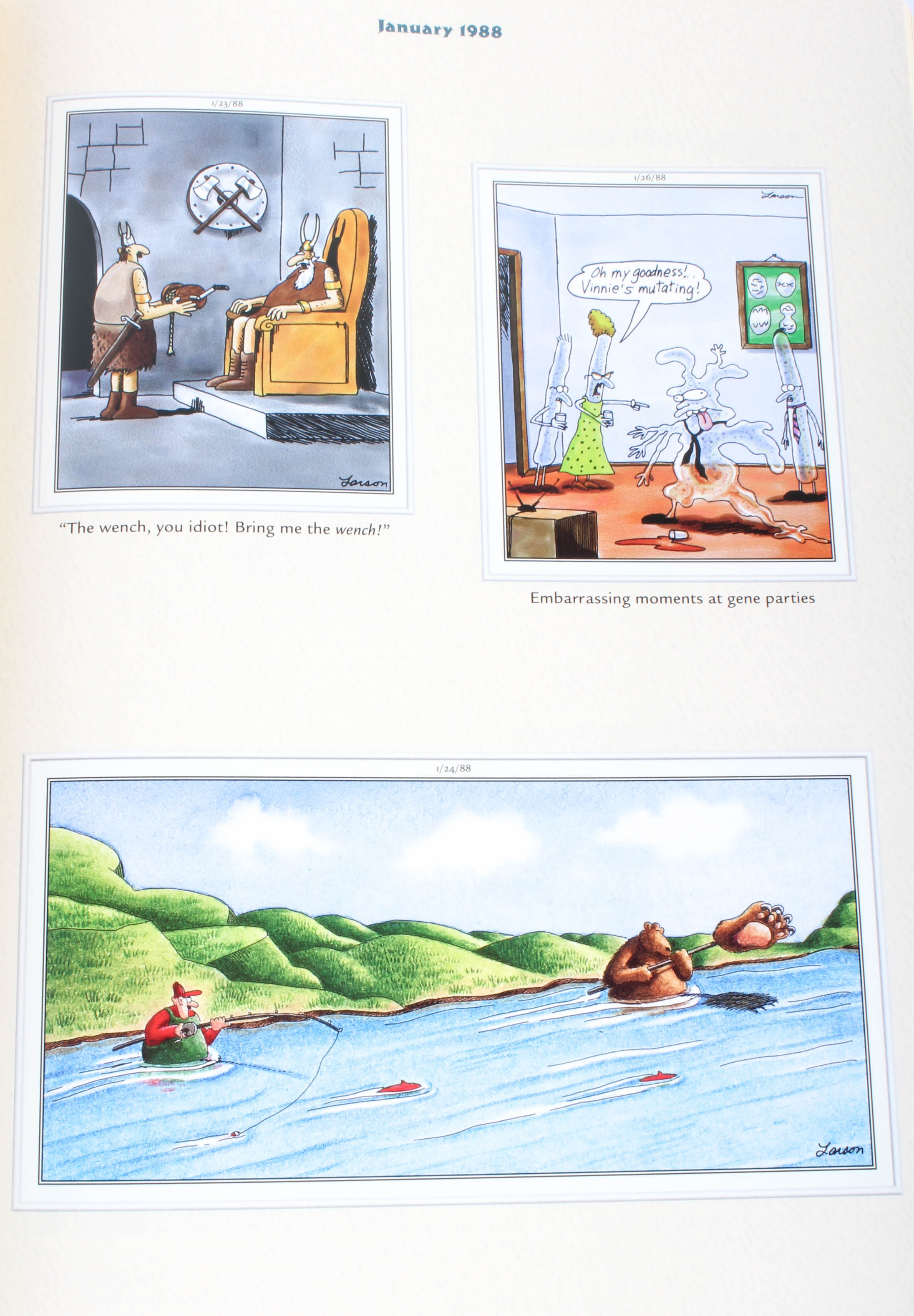 the complete far side pdf