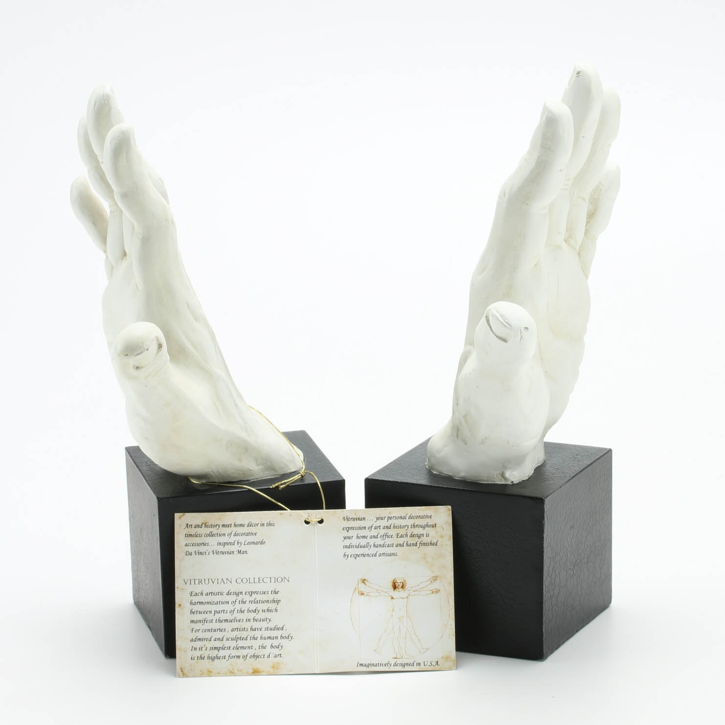 Vitruvian Collection Hand Sculpture Bookends