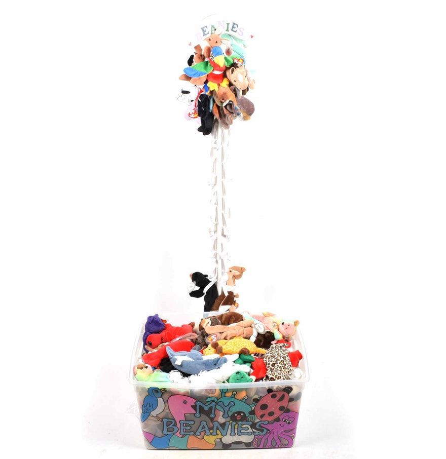 beanie babies collection and wooden display stand ebth. Black Bedroom Furniture Sets. Home Design Ideas