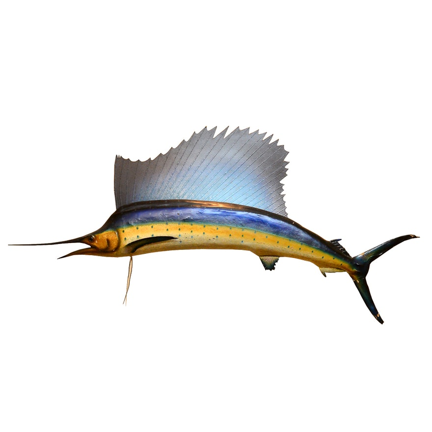 considerable swordfish mount ebth