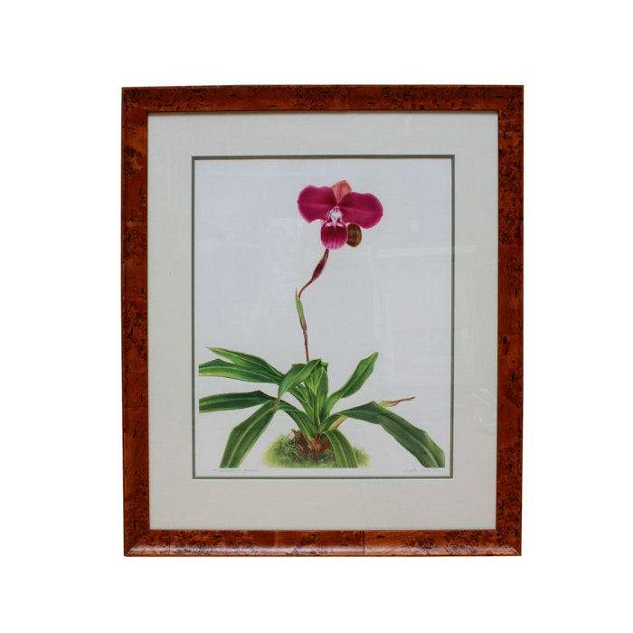 Signed Angela Mirro Limited Edition Orchid Gicl 233 E Print Ebth