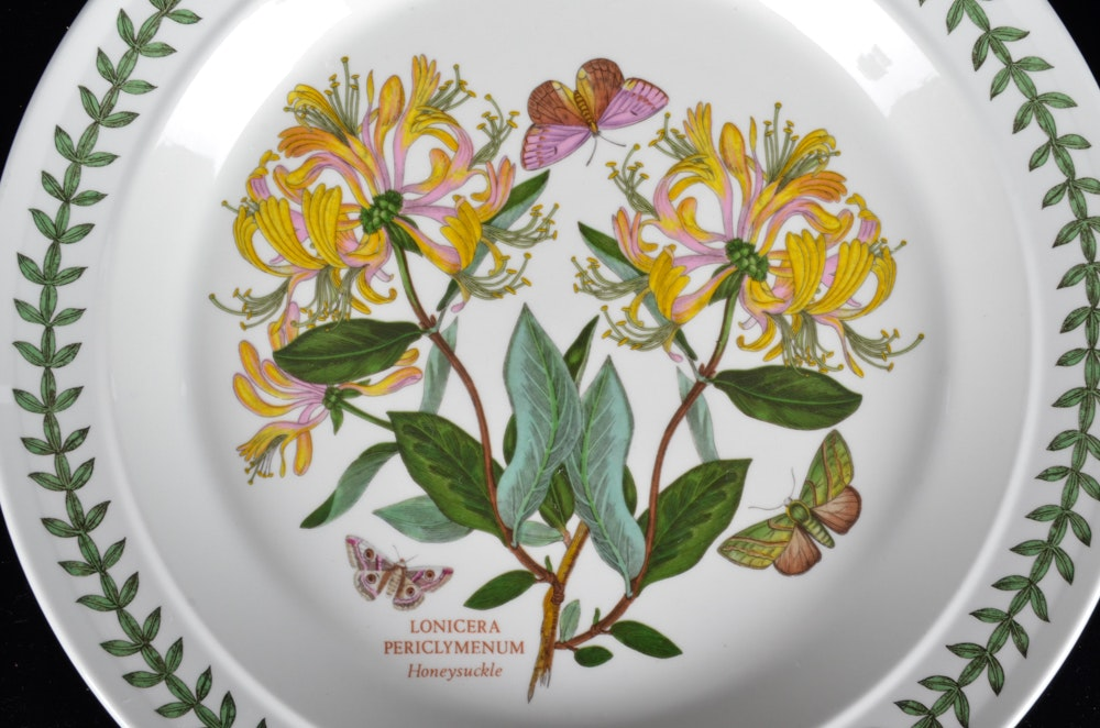 Portmeirion Botanic Garden Dinner Plates Ebth