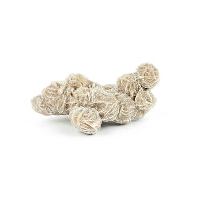 Gypsum Rosette