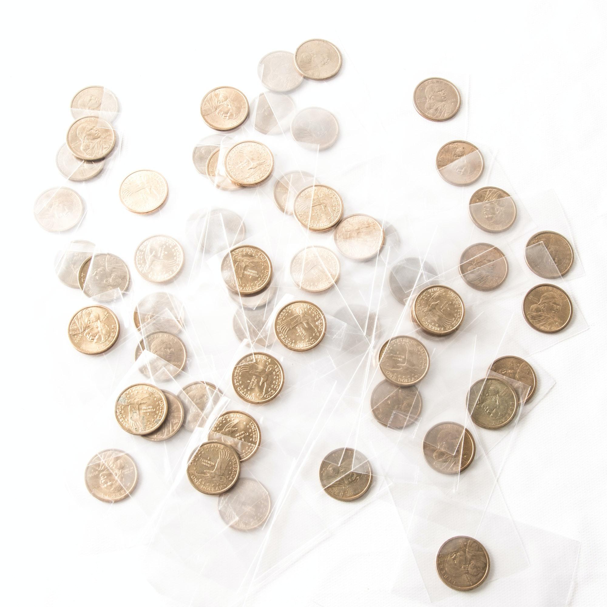 Large Collection of Sacagawea Dollars