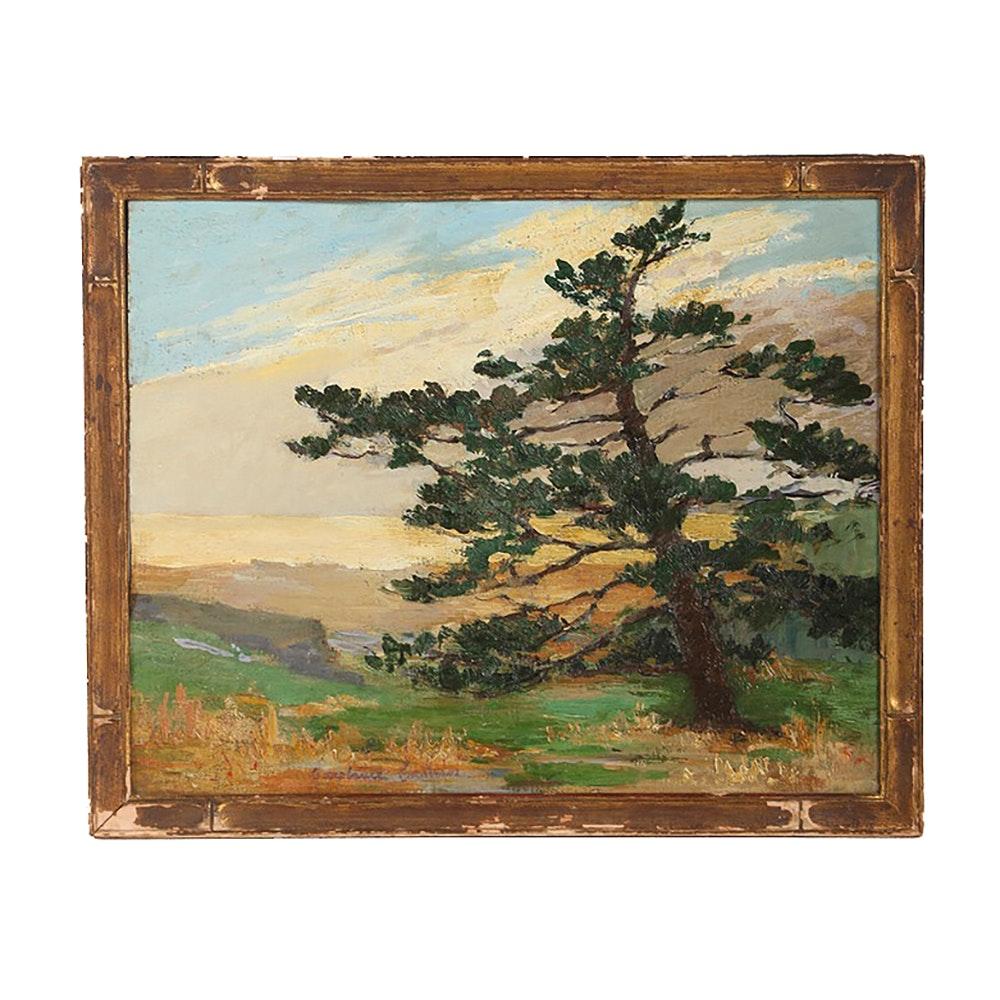 "Constance Cochrane Oil Painting on Board ""Blazing Sky"""