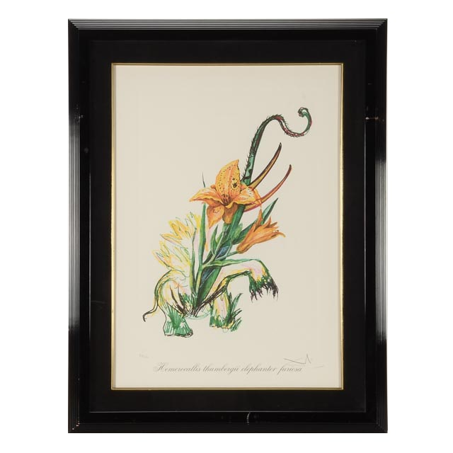 "Salvador Dalí Signed Limited Edition Embossed Lithograph ""Hemerocalia thumberghi elefanter furiosa (Elephant Lily)"""