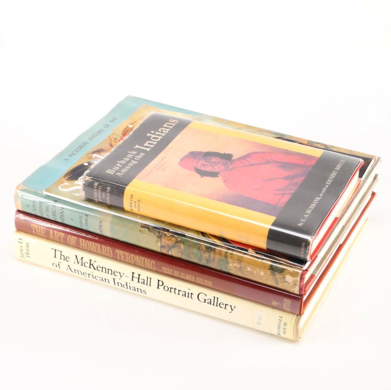 Assortment of Native American Art Books