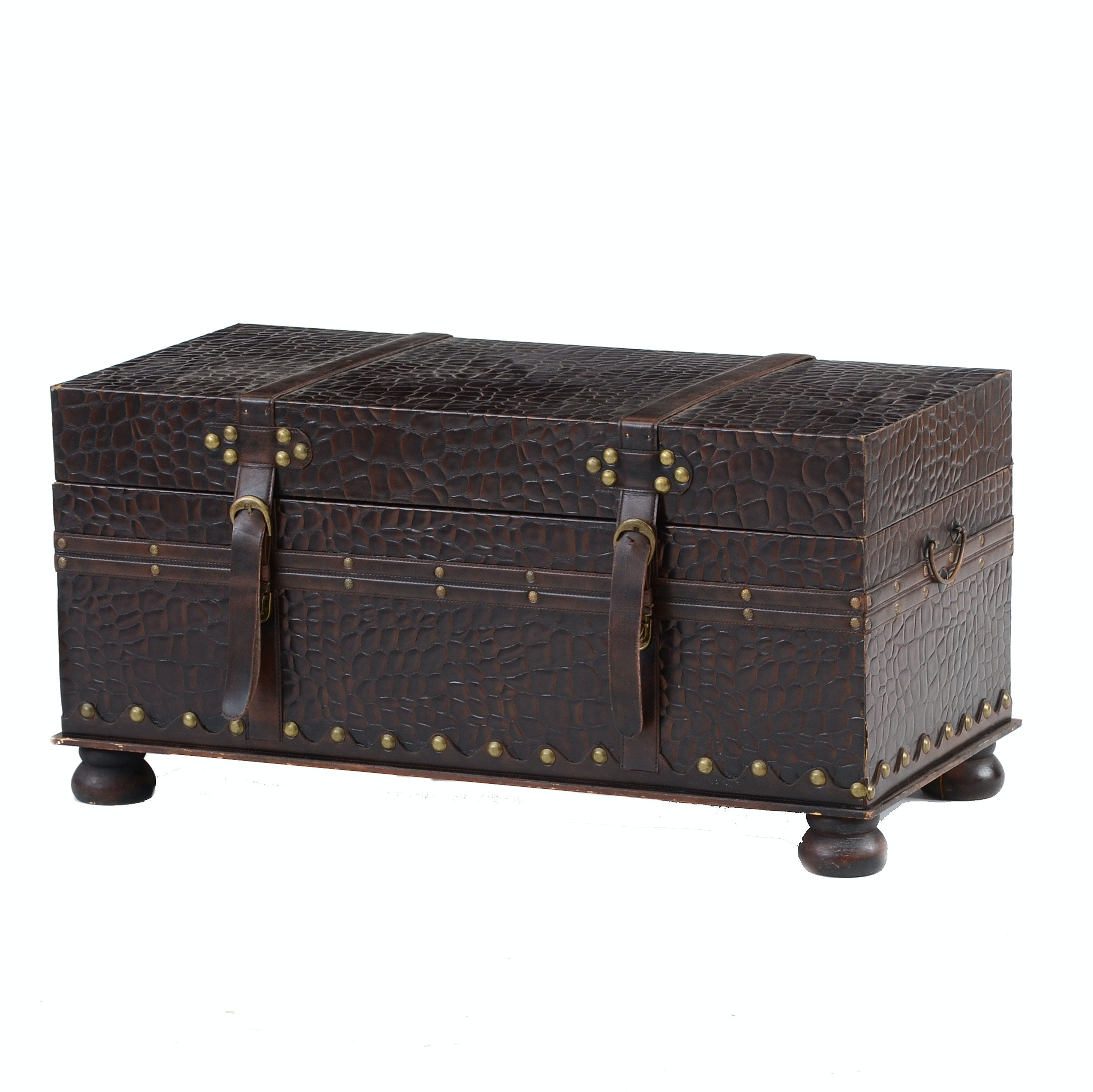 Hard-sided Storage Trunk