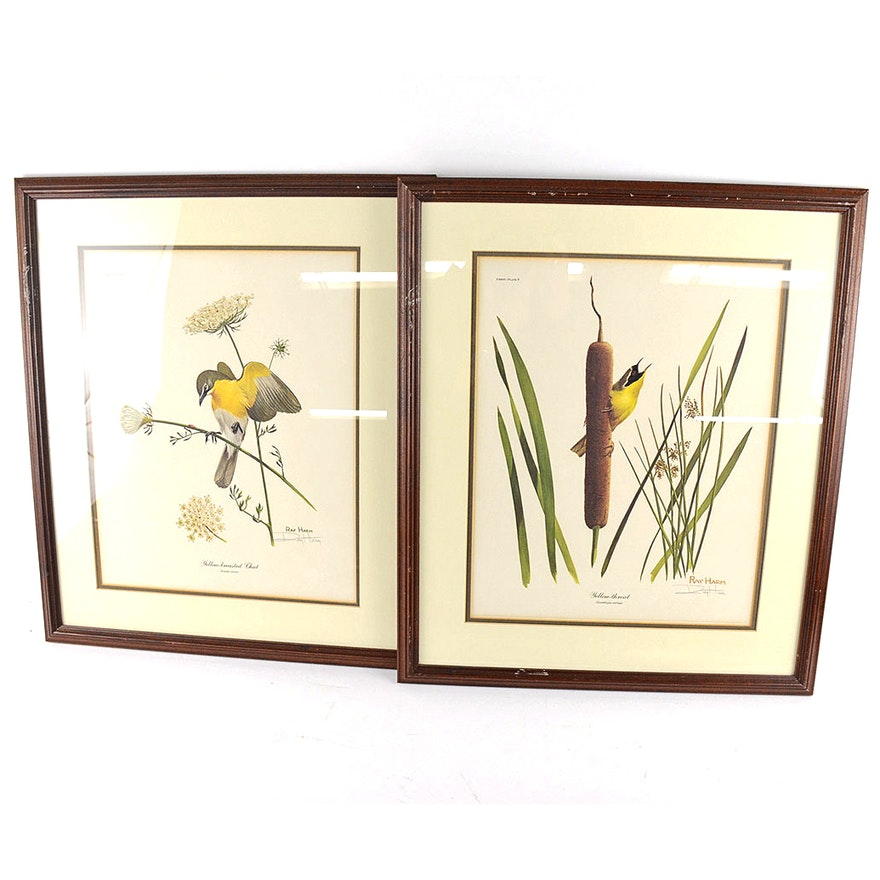 Signed Ray Harm Bird Prints in Matching Frames : EBTH
