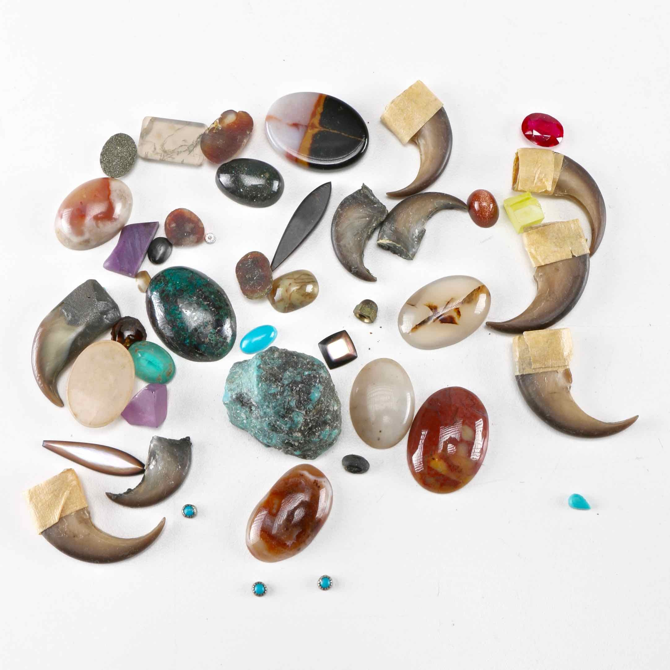 Assorted Stones and Bear Claws