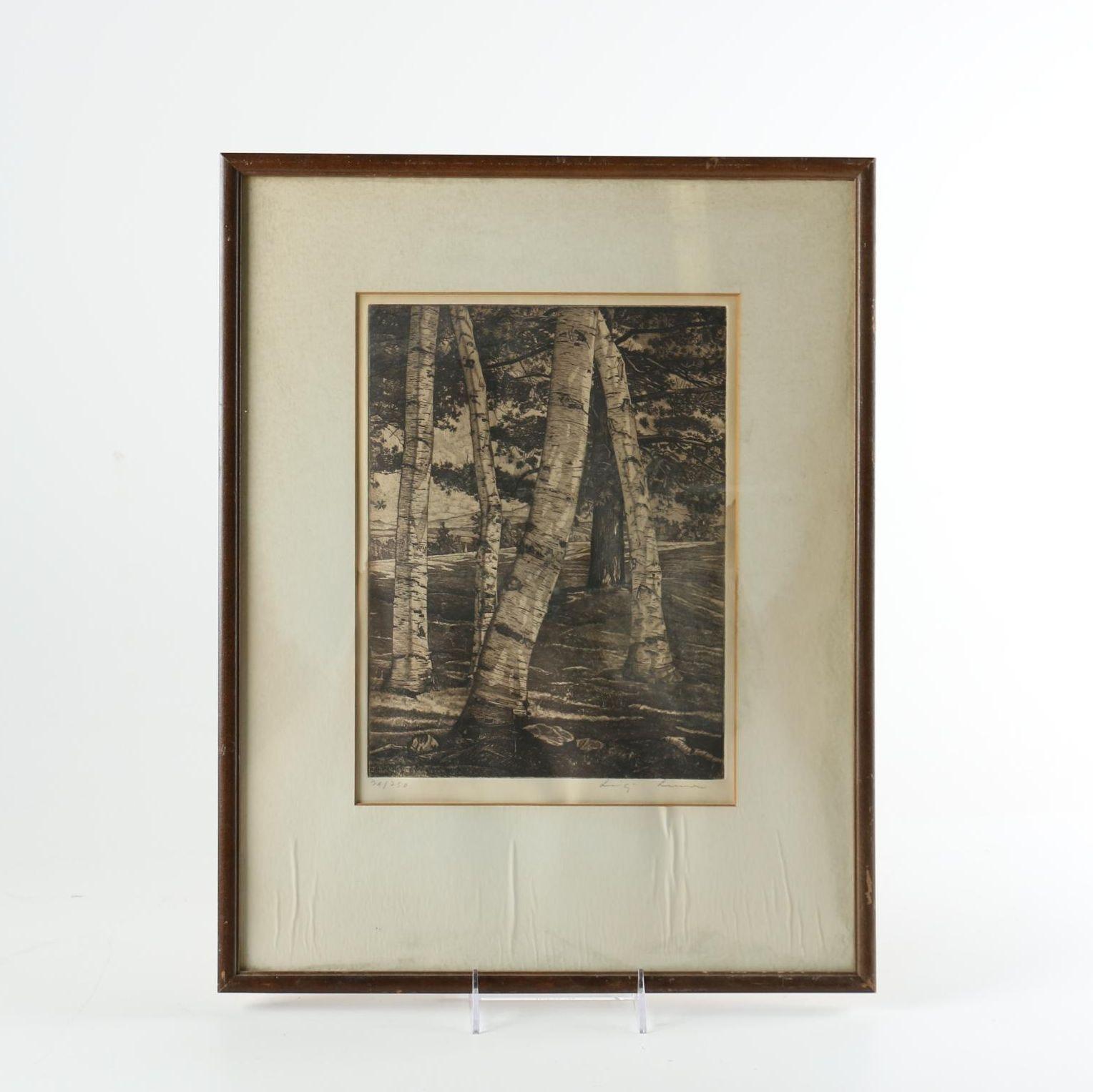 Luigi Lucioni Limited Edition Etching of Birch Trees