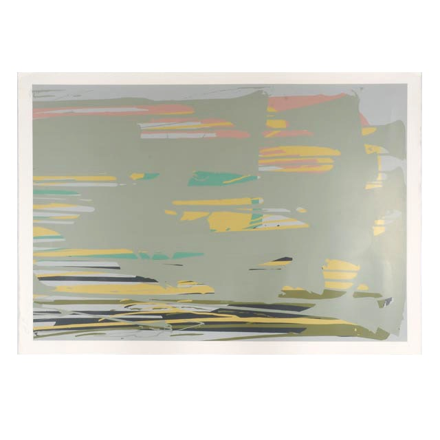 Larry Poons Signed Limited Edition 1979 Serigraph