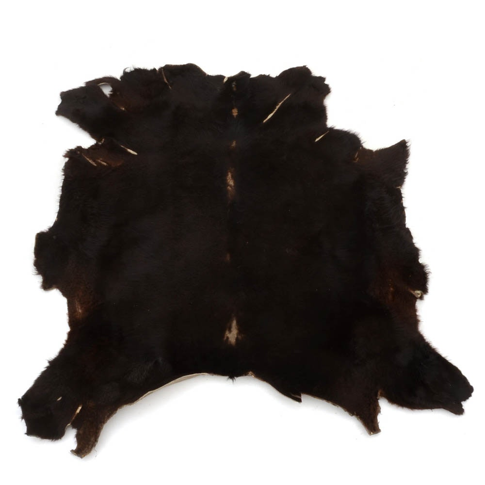 Genuine Black Bear Rug