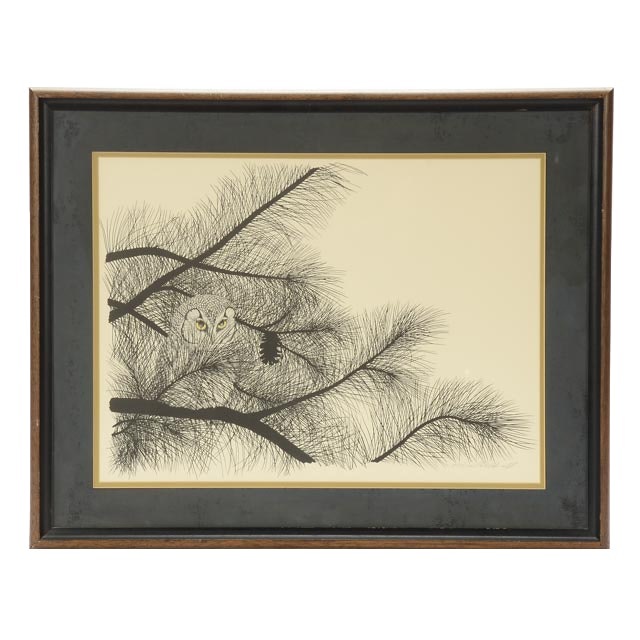 """Peter Parnall Signed Limited Edition Lithograph """"Richardson's Owl"""""""