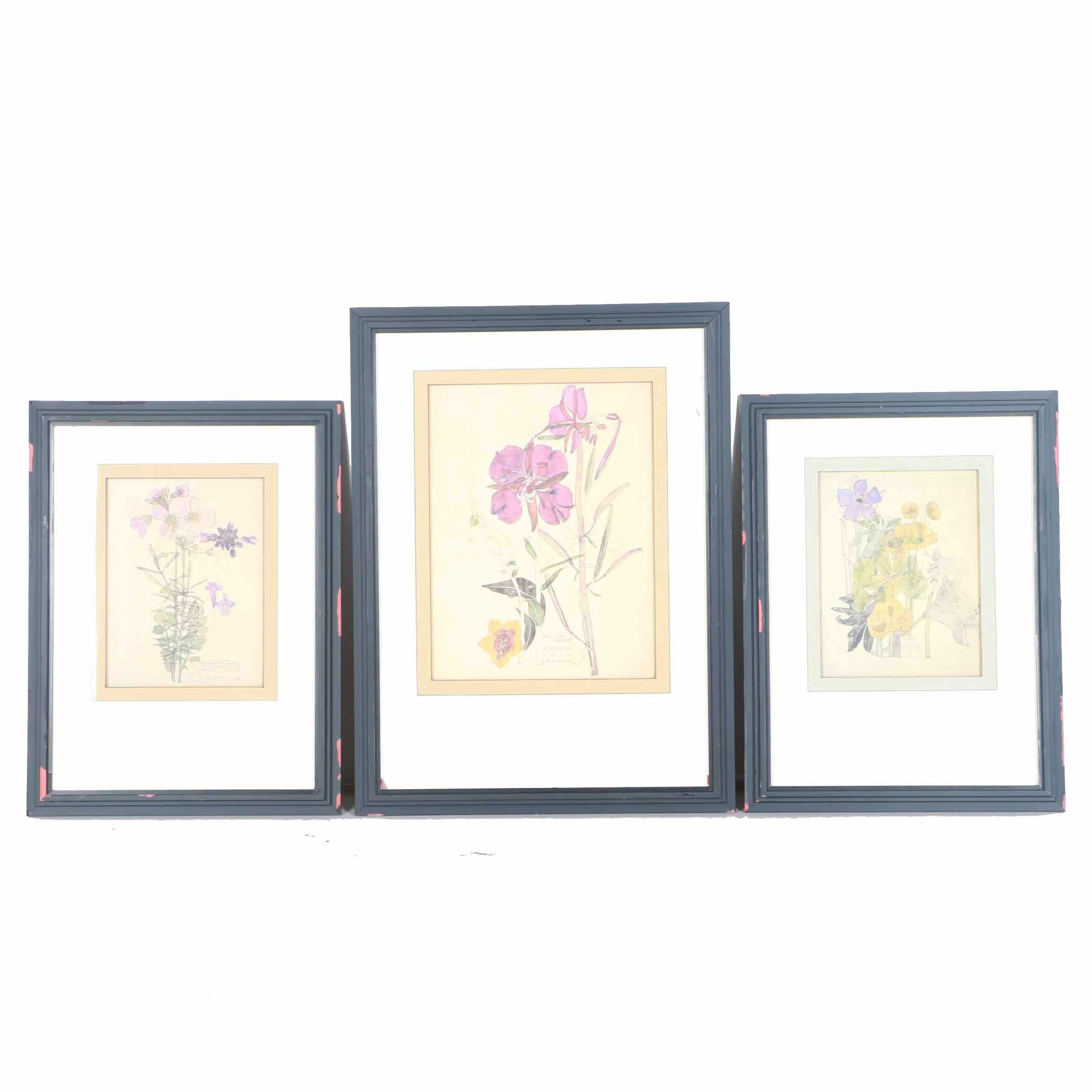 After Charles Rennie Mackintosh Offset Lithographs of Flowers