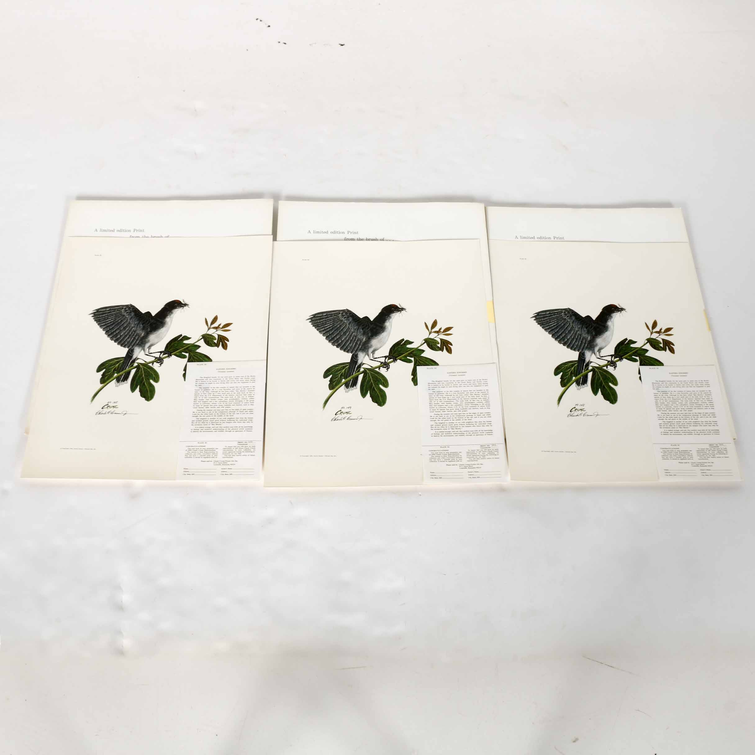 Charles Crume, Jr. Limited Edition Offset Lithographs of Eastern Kingbirds