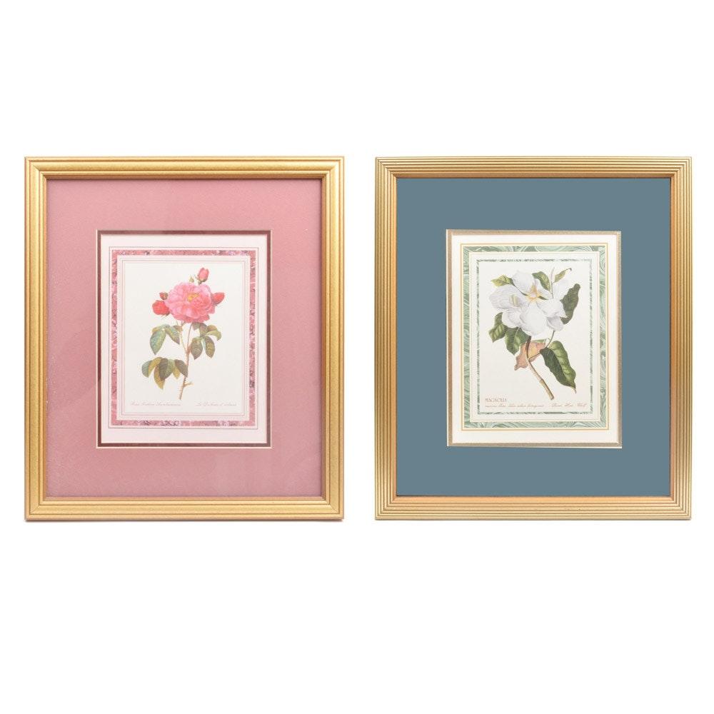 Pair of Offset Lithograph Botanical Prints