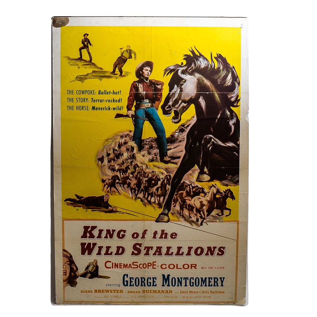 """King of Wild Stallions"" Movie Poster"