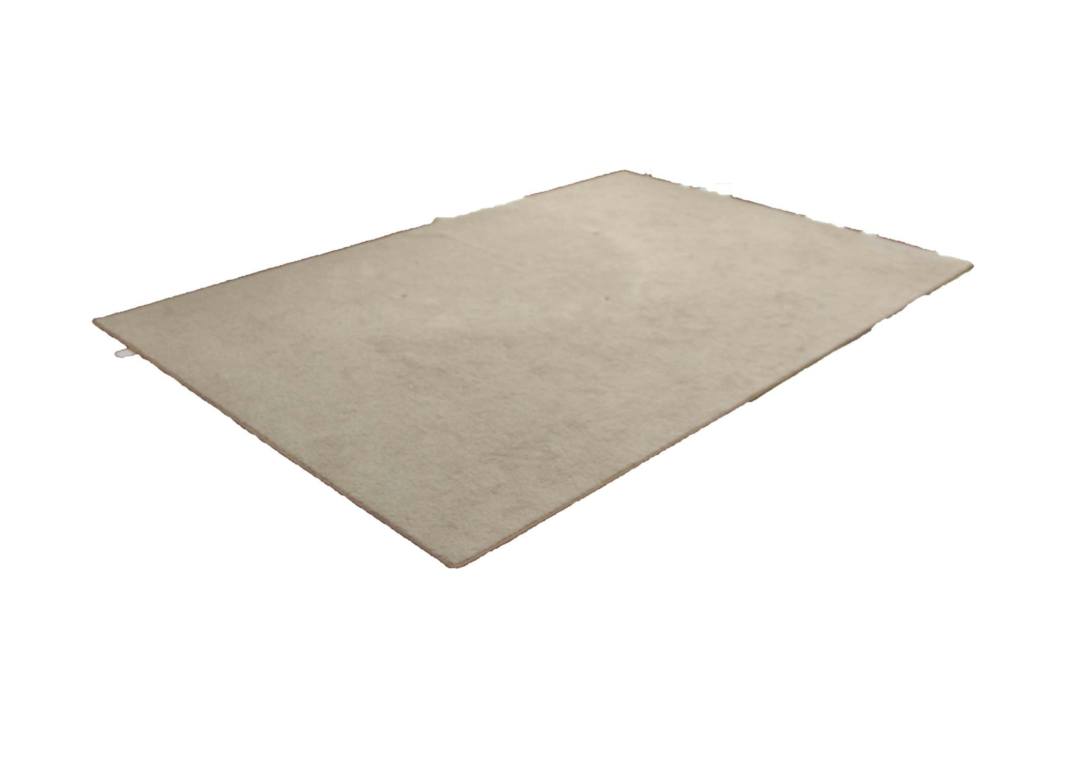 Ivory Colored Area Rug