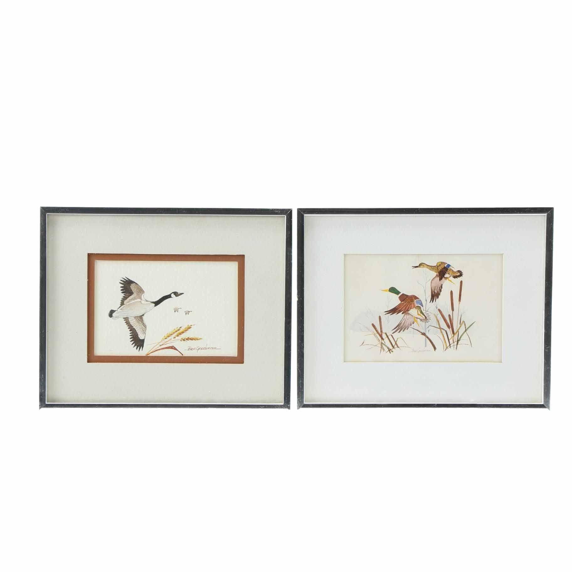 Ben Goodman Watercolors on Paper of Water Fowl