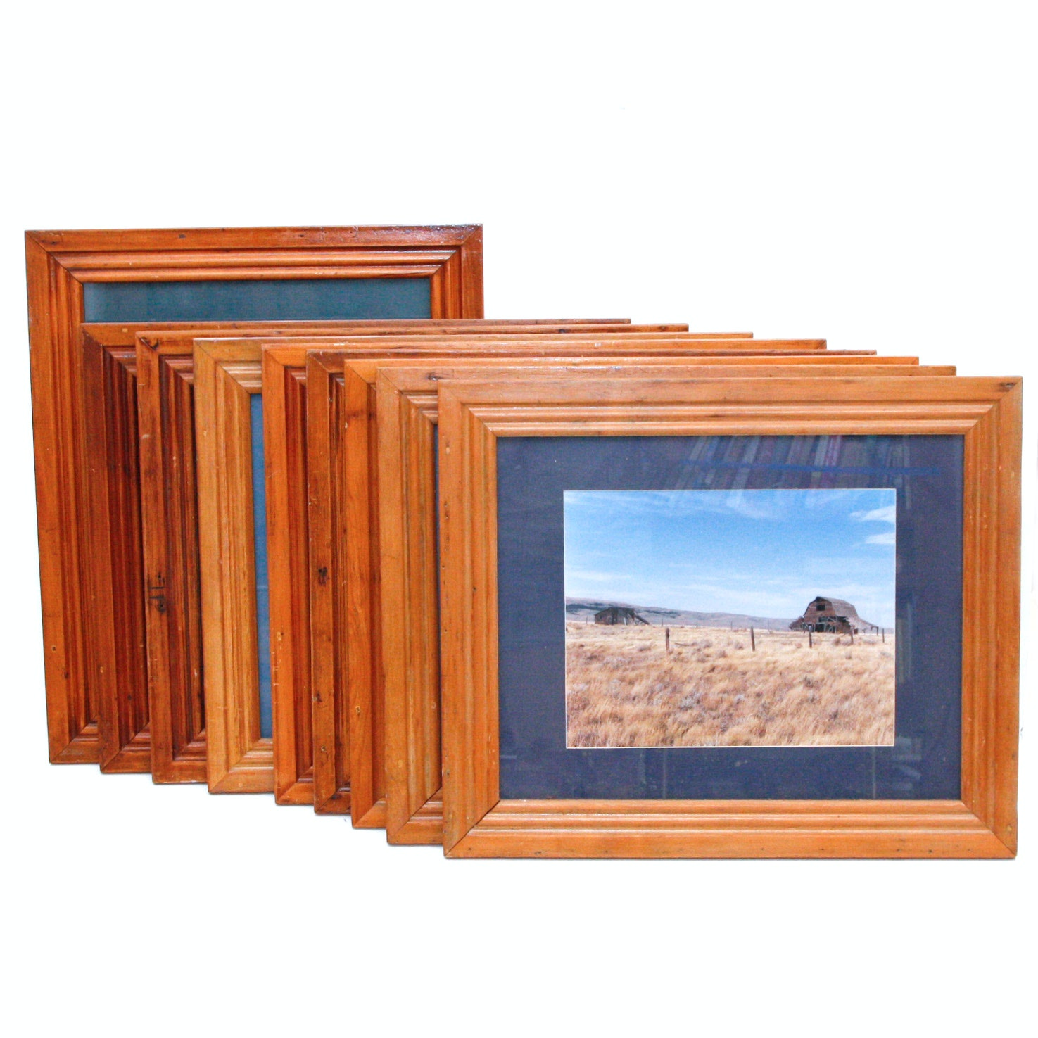 Gallery of Nature Photography in Reclaimed Wood Frames