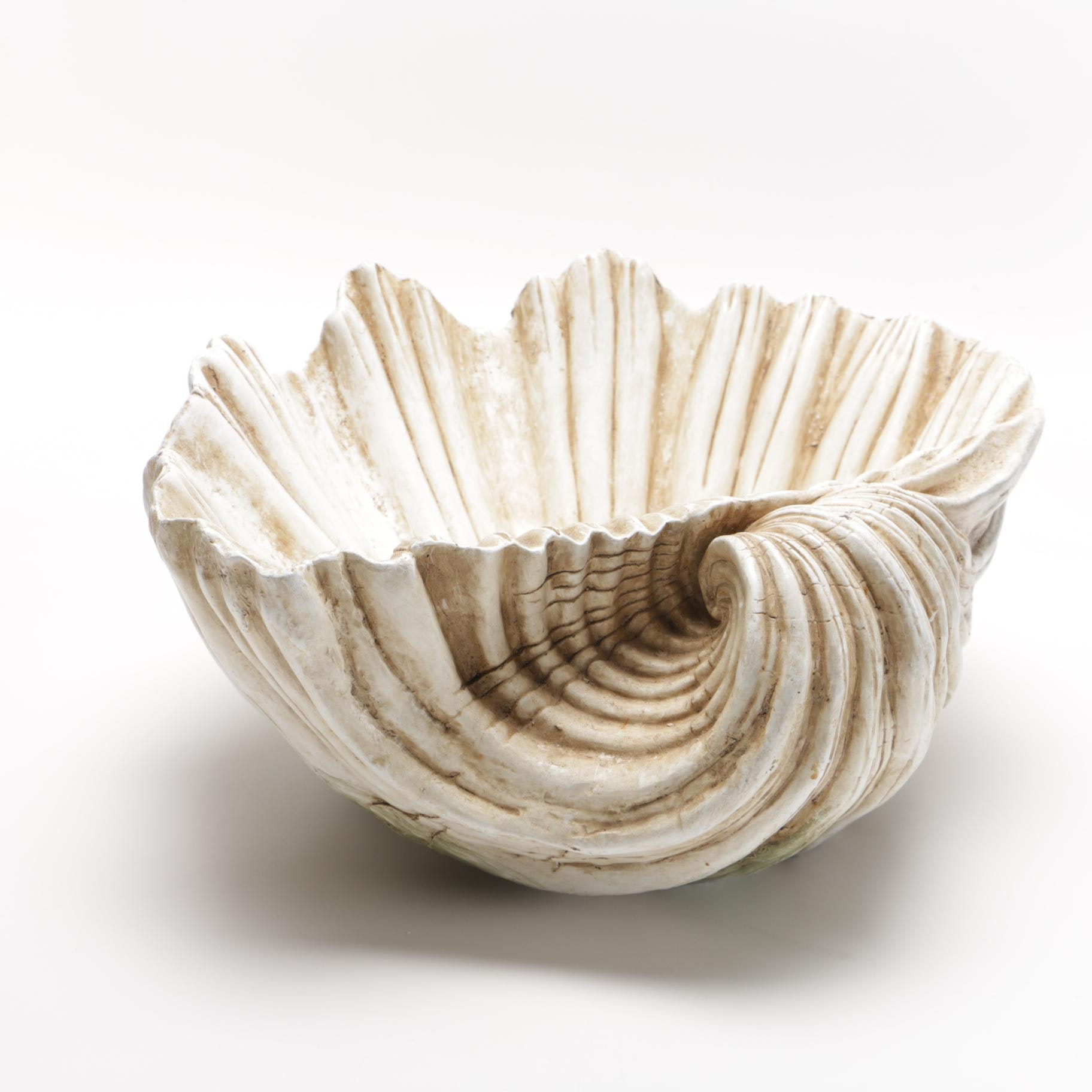 Decorative Plaster Ark Seashell